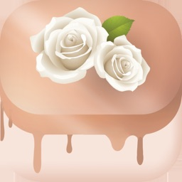 Gateau Wedding Cake Decorating