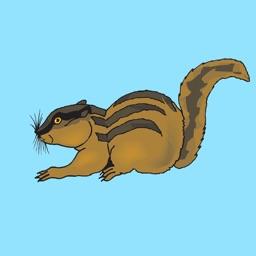 Chipmunk & Squirrel Stickers