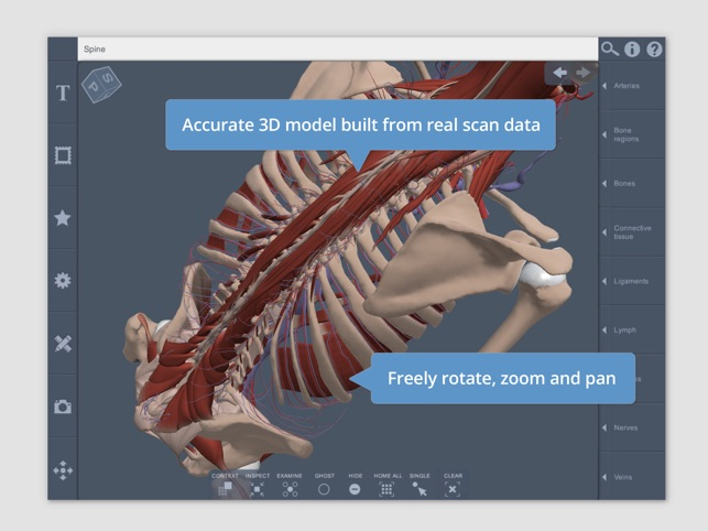 Spine: 3D Real-time on the App Store