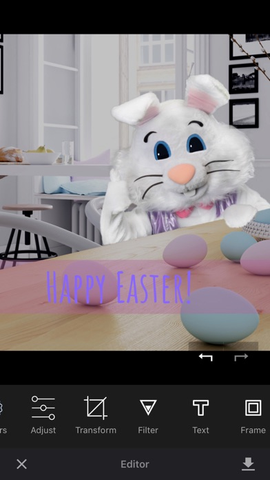 Catch the Easter Bunny screenshot 3