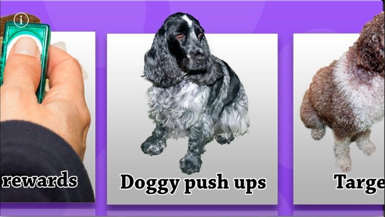 The Friendly Dog Club: Basic Training