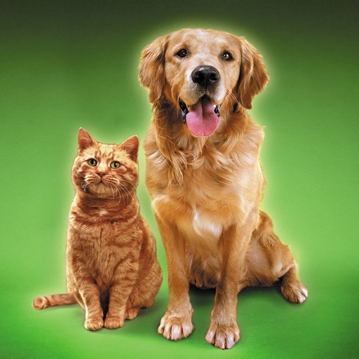 Cat Sounds & Dog Sounds