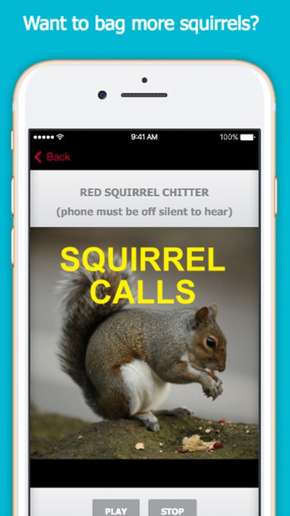 Squirrel Hunting Calls