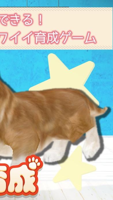 幸せの犬育成ゲーム3Dスクリーンショット2