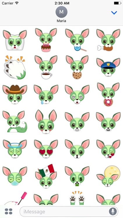 Green Saint Patrick's Day Chihuahua Stickers