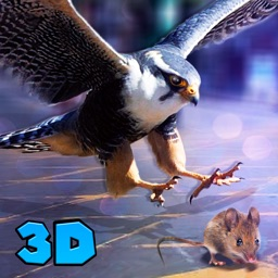 City Falcon Simulator 3d: Bird Wild Life