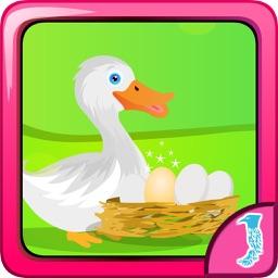 Ajaz Duck Egg Escape