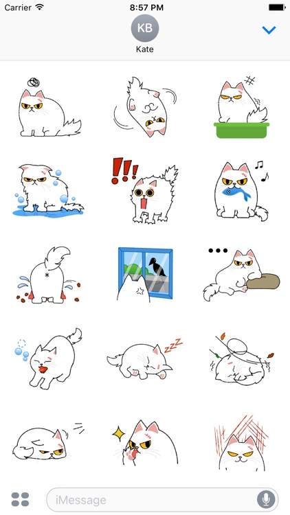 Cute Persian Cat Stickers Pack