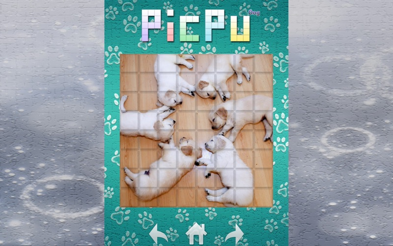 Screenshot #2 pour PicPu Dog Puzzle
