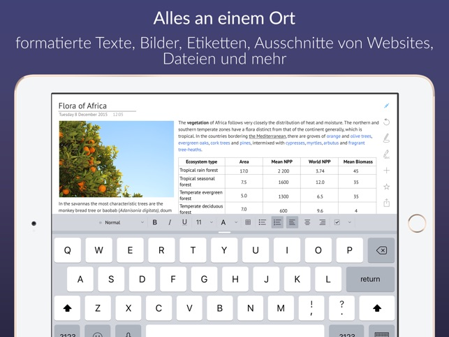 Outline – Dein digitales Notiz Screenshot