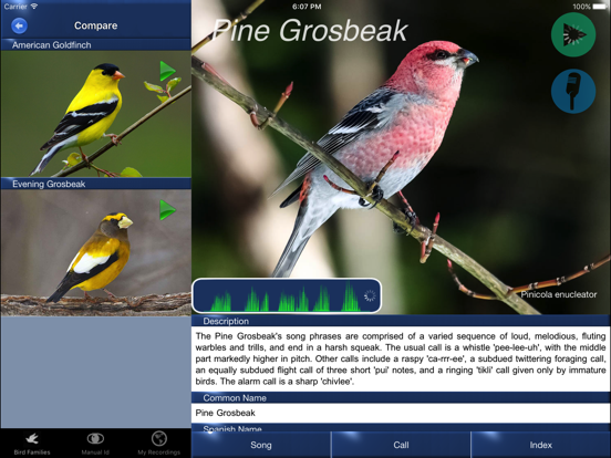 Bird Song Id USA Automatic Recognition Birds Songs-ipad-4