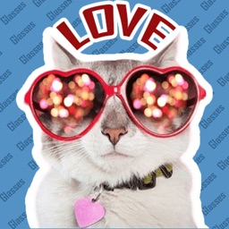 Glasses Cats with Attitude
