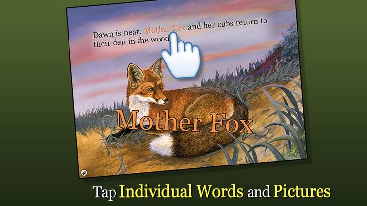Red Fox at Hickory Lane - Smithsonian's Backyard