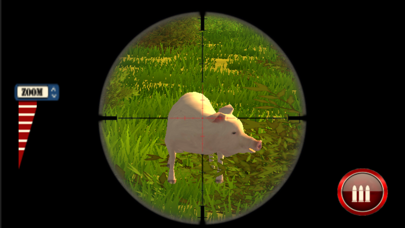 Wild Pig and Boar Hunting Simulator