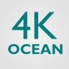 Vladislav Gorbylev - 4K Ocean artwork