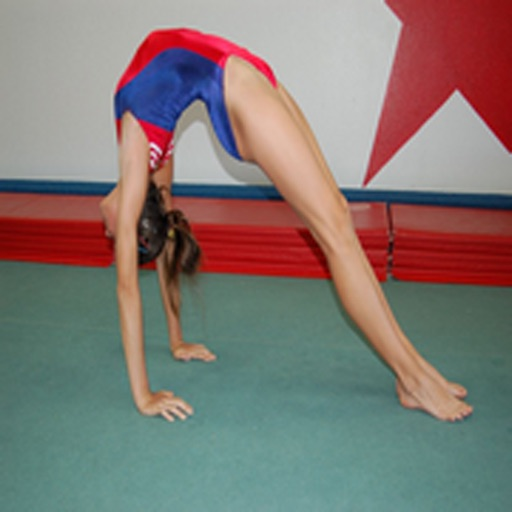 How To Do Gymnastics