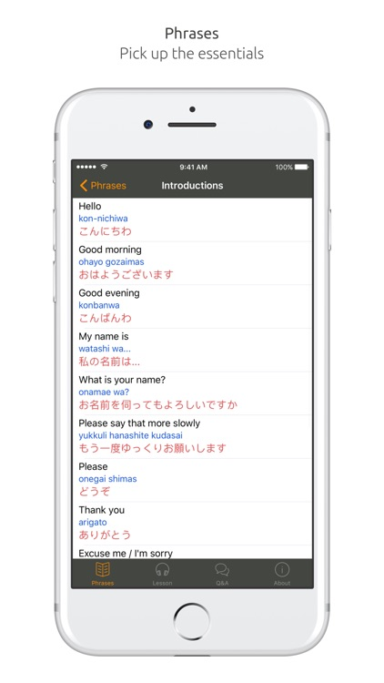 Japanese Language Guide & Audio - World Nomads screenshot-3