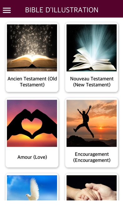 French Bible with Audio - La Sainte Bible audio app image