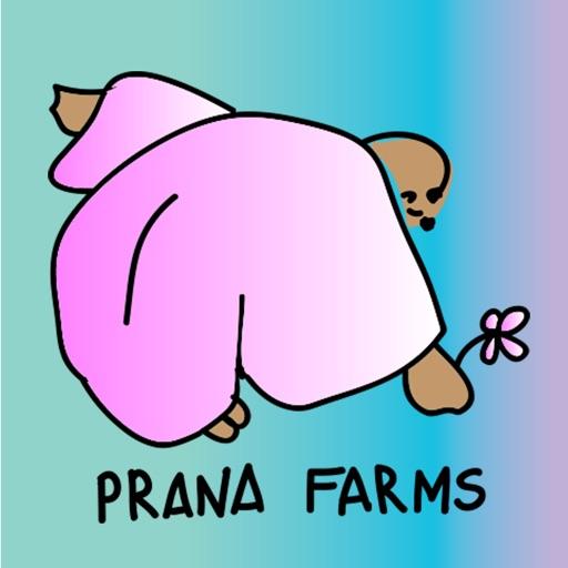 Prana Pack