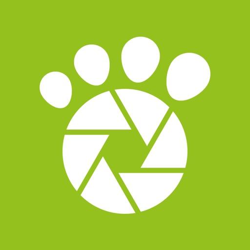 Tractive Photos - Pet Photo Gallery