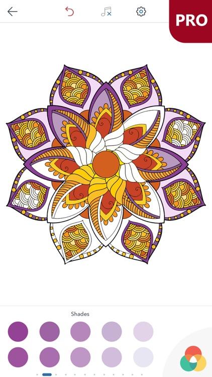 Magic Mandalas PRO - Coloring Book for Adults screenshot-3