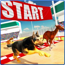 Dog Racing Stunt & Jump 3D Sim