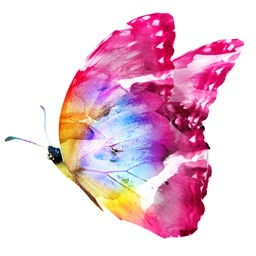 Butterflies Watercolor Butterfly Sticker Pack
