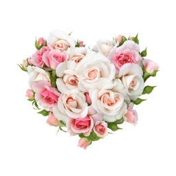 flowers(フラワーズ)-人気の出会い系アプリ