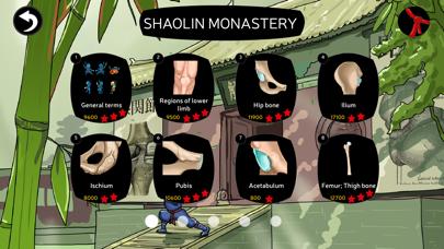Anatomy Ninja Lower Limb screenshot two