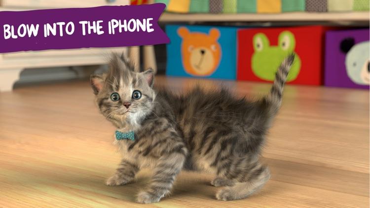 Little Kitten - My Favorite Cat screenshot-3