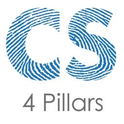 4 Pillars of Mastery