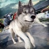 Wolf Simulator 2016 . Animal Running Game for Free Reviews