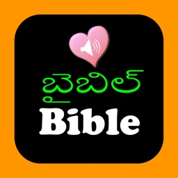 Telugu-English Indian Audio Holy Bible