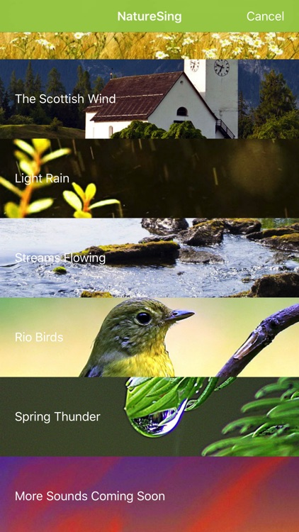 NatureSing--Best nature sounds screenshot-3