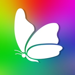Butterfly HD Colorful Wallpapers | Backgrounds