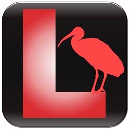Larkwire Bird Song: Water Birds of North America