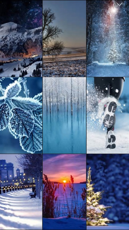 Winter Wallpapers & Backgrounds™