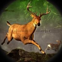 Codes for Deer Hunting: Buck Shooting Simulator Hack