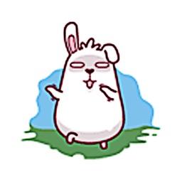 Funny Fat Rabbit