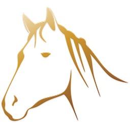 Horse Sticker Pack!
