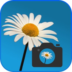 FlowerChecker, plant identification