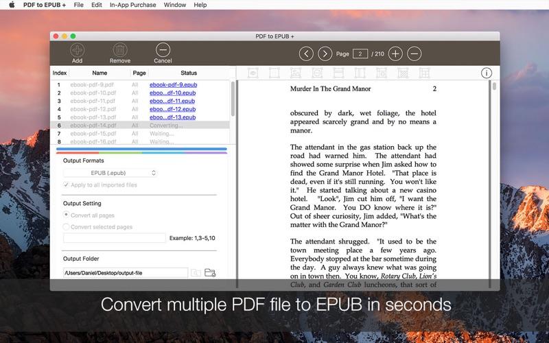 5_PDF_to_EPUB_.jpg