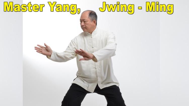 Tai Chi 108 Yang Classical Form screenshot-3