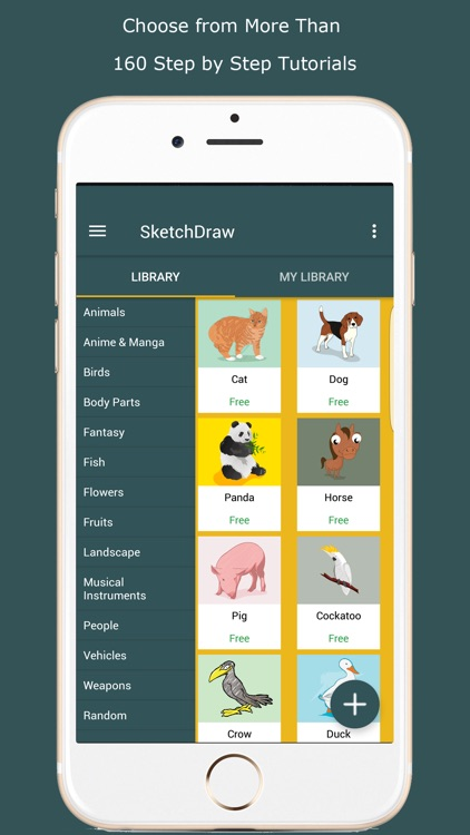 SketchDraw- How to Draw Anything