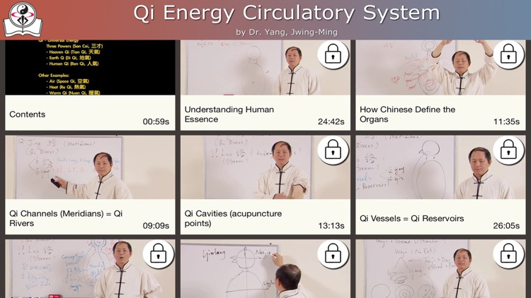 Qi Energy Circulatory System Video Lesson