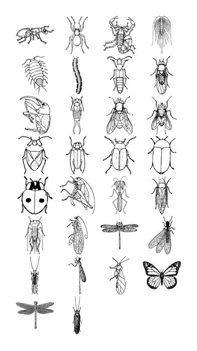 昆虫ステッカーパックのスクリーンショット1