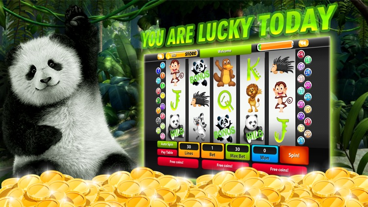 [updated August] Register An Account With Casino Fiz And Slot
