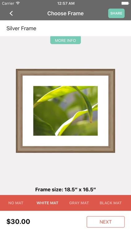 Eaze Custom Framing by MOHAMMED ELYAS