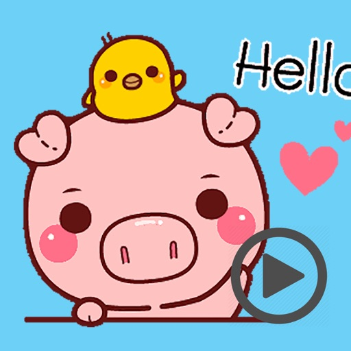 Pig Baby Aniamted