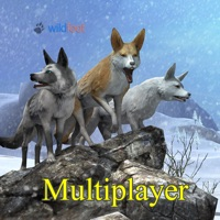 Codes for Fox World Multiplayer Hack